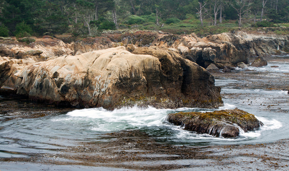 Carmel Coast Point Lobos